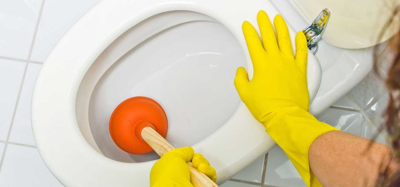 Clogged Toilet Repair in Houston