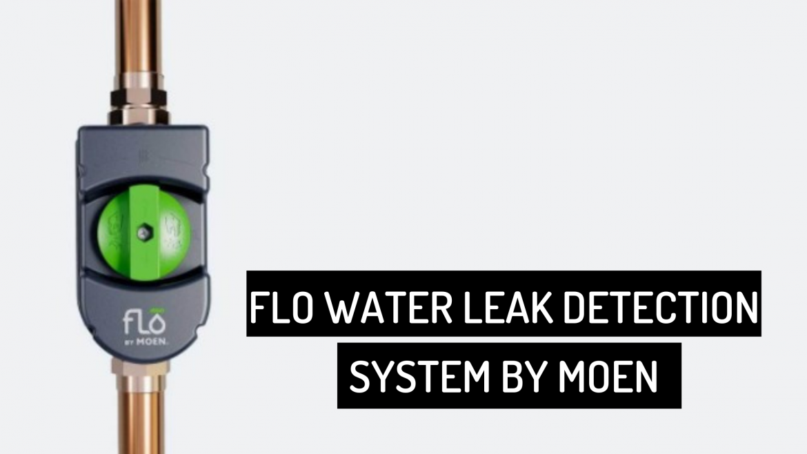 Why Flo Water Leak Detection System is Worth It