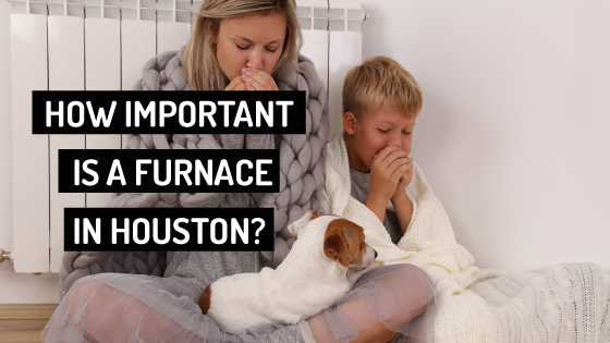 mother with son and dog - Furnace Company